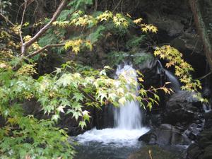 笠置山中の小さな滝