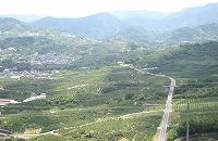 紀州平野の景色